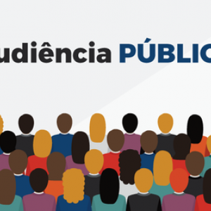 audiencia-publica_(860).png